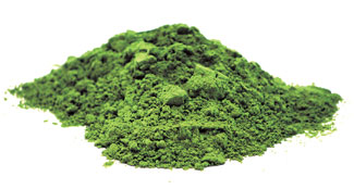 Chlorella SuperFood Ingredient