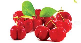Acerola Cherries SuperFood Ingredient