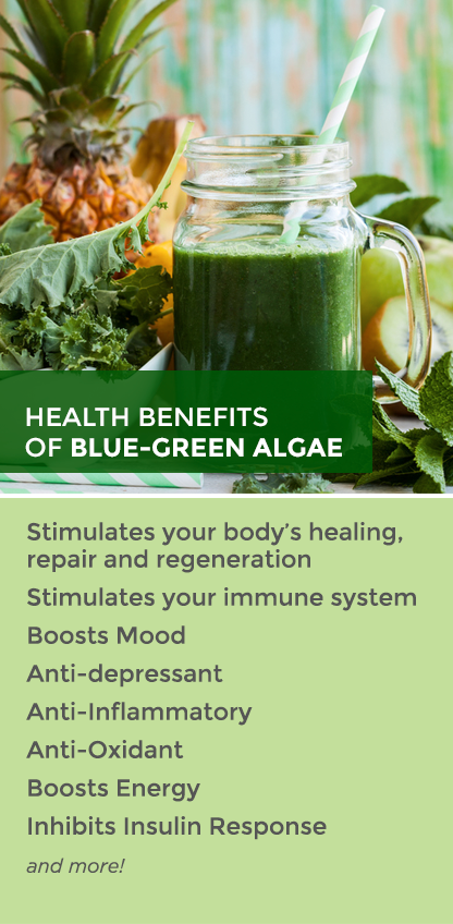 Health benefits of Blue Algae