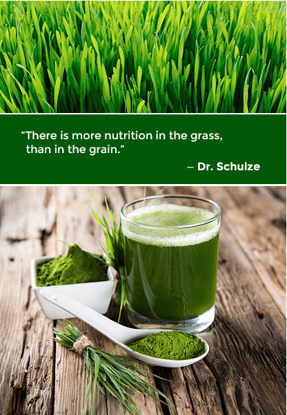 there-is-more-nutrition