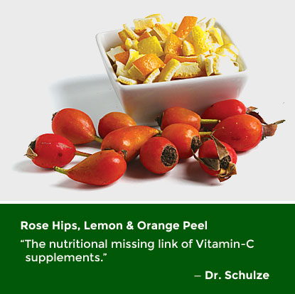 SFP_Ingredients-Rose-Hips-Lemon-Orange_PG1